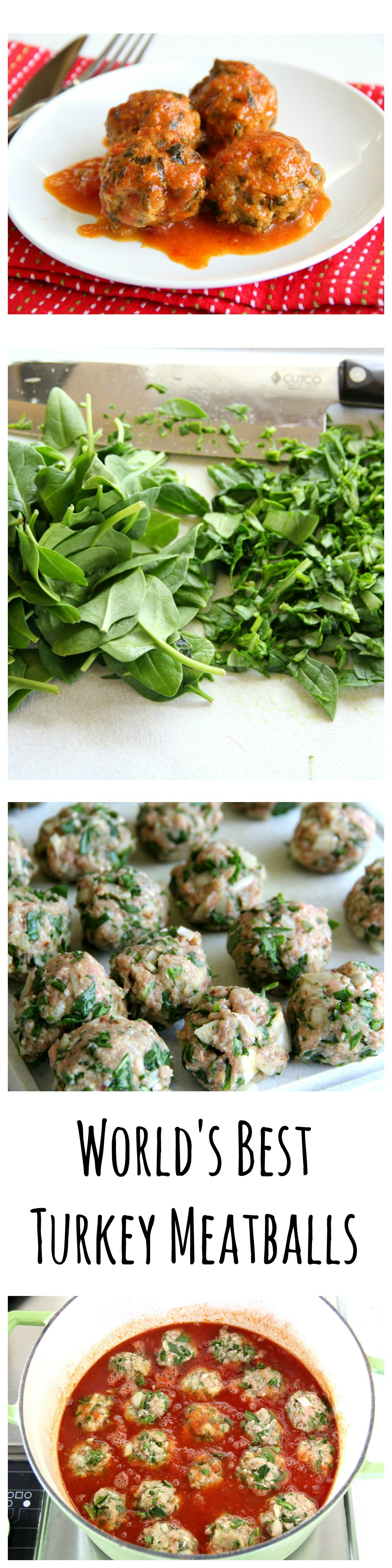 World's Best Turkey Meatballs on ShockinglyDelicious.com