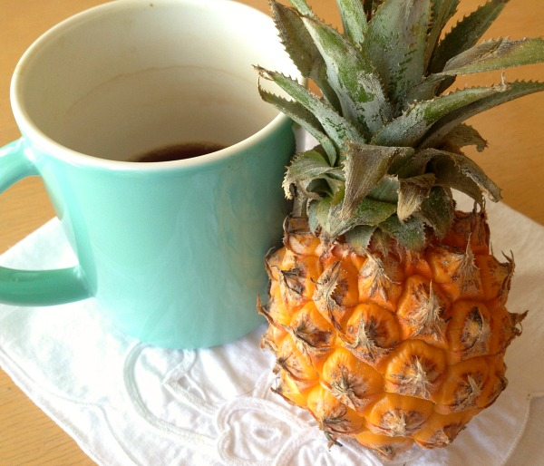 Baby Pineapples on Shockingly Delicious