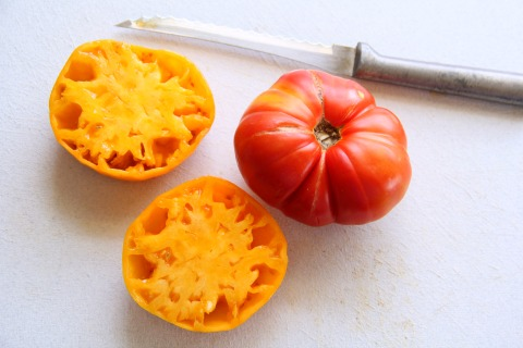 How to seed a tomato on Shockingly Delicious