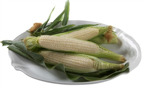 Amaize Sweet White Corn | ShockinglyDelicious.com