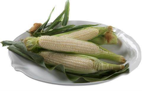 Amaize Sweet White Corn | ShockinglyDelicious.com