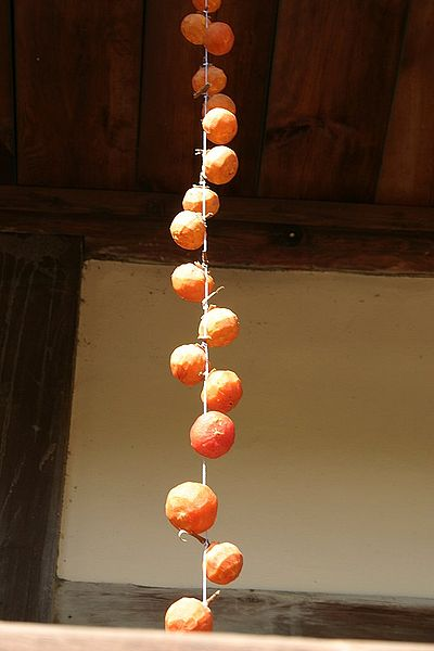 Persimmons drying on a string on ShockinglyDelicious.com