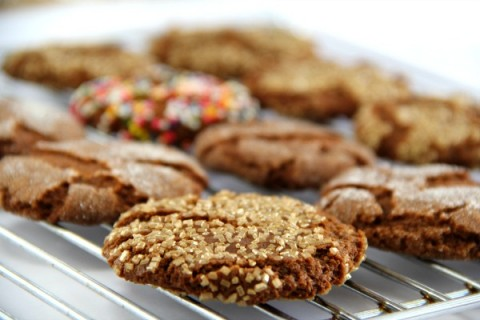Cookie Contest winner! Sugar and Spice Cookie | Classic Molasses Spice Cookie Recipe | ShockinglyDelicious.com
