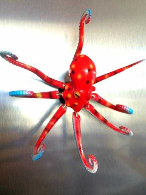 Octopus magnet from Malibu Pier on ShockinglyDelicious.com