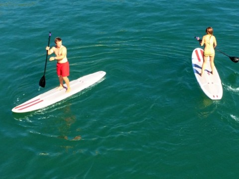 Tourists doing stand up paddle board near the Malibu Pier on ShockinglyDelicious.com
