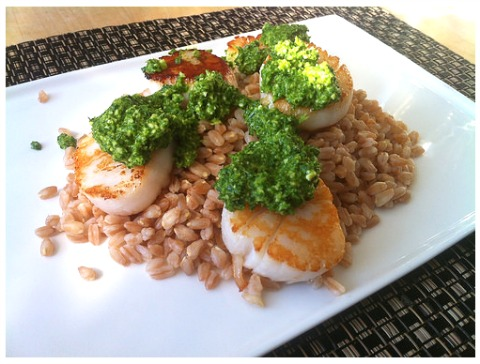 Kale Pesto on Scallops on the blog LBC Holly