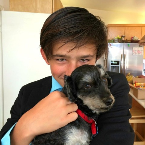 Nick and Kai the rescue dog May 2015