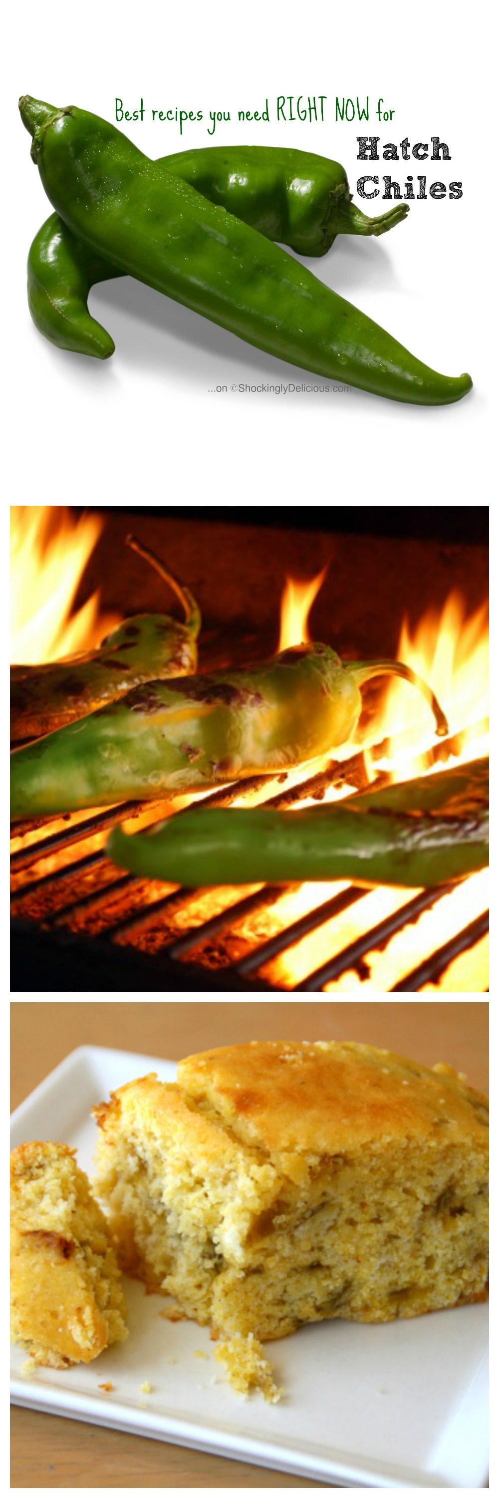 Best recipes you need right now for Hatch Chiles