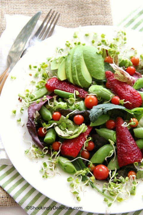 Delicious Spring Farmers Market Salad on ShockinglyDelicious.com