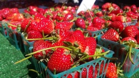 Fresh Strawberries at the farmers market on ShockinglyDelicious.com