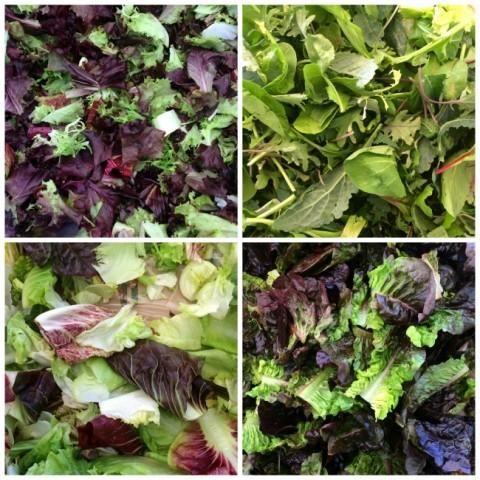 Fresh lettuce mixes on ShockinglyDelicious.com