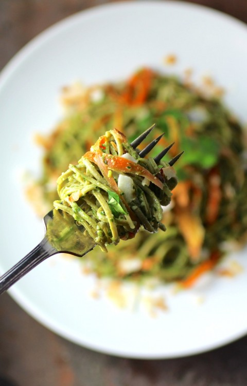 Edamame Spaghetti with Kale Cilantro Pesto recipe on ShockinglyDelicious.com blog