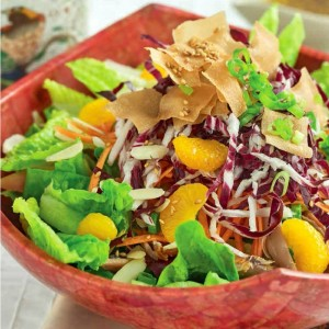 chinese-chicken-salad-from-katie-chin-on-shockinglydelicious-com-square