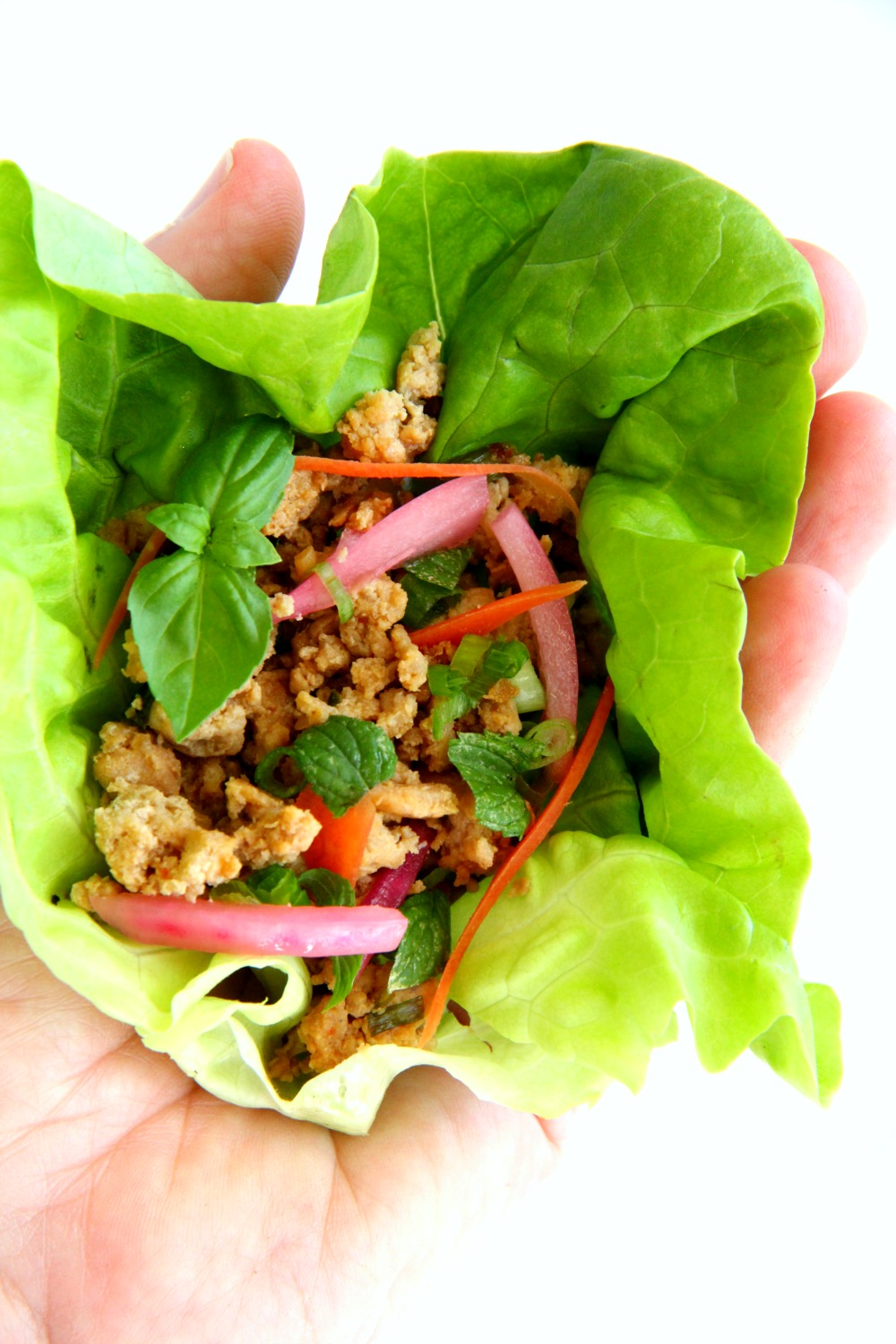 low-carb-thai-inspired-turkey-lettuce-wraps-held in the palm of a hand