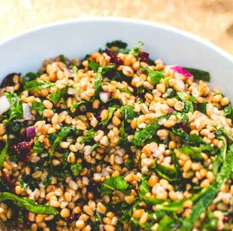 Kale and Spelt Berry Salad with Sweet Cranberries and Lemon Dressing recipe from Little Eater