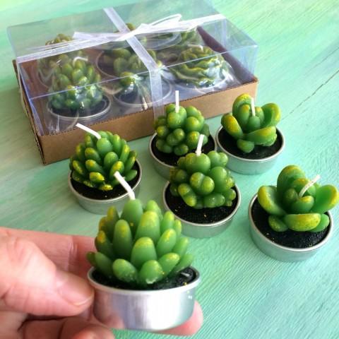 Realistic Succulent tea lights
