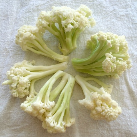Florets of Flowering Cauliflower arranged in a circle on ShockinglyDelicious.com