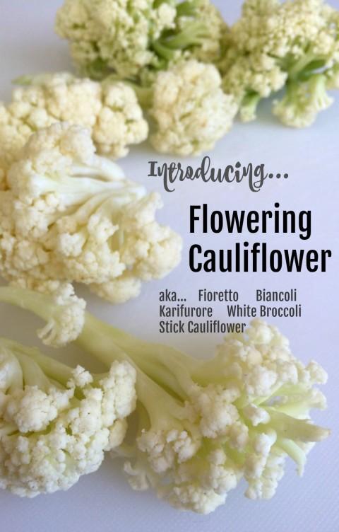 Flowering Cauliflower on ShockinglyDelicious.com