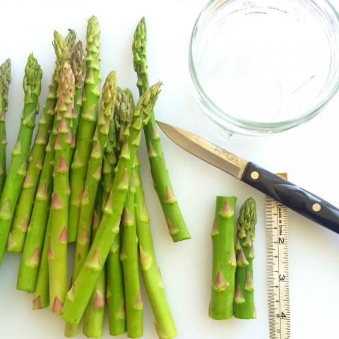 Cutting the asparaagus