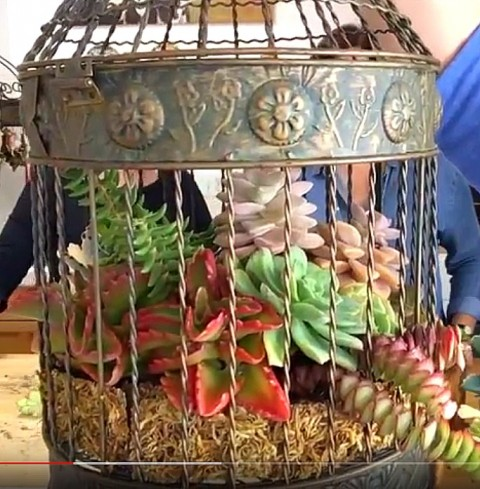 Bird cage made by Cindie Flannigan