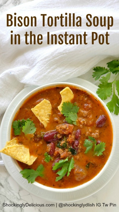 Bison Tortilla Soup in the Instant Pot recipe on ShockinglyDelicious.com