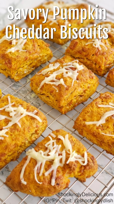 Savory Pumpkin Cheddar Biscuits Recipe on ShockinglyDelicious.com