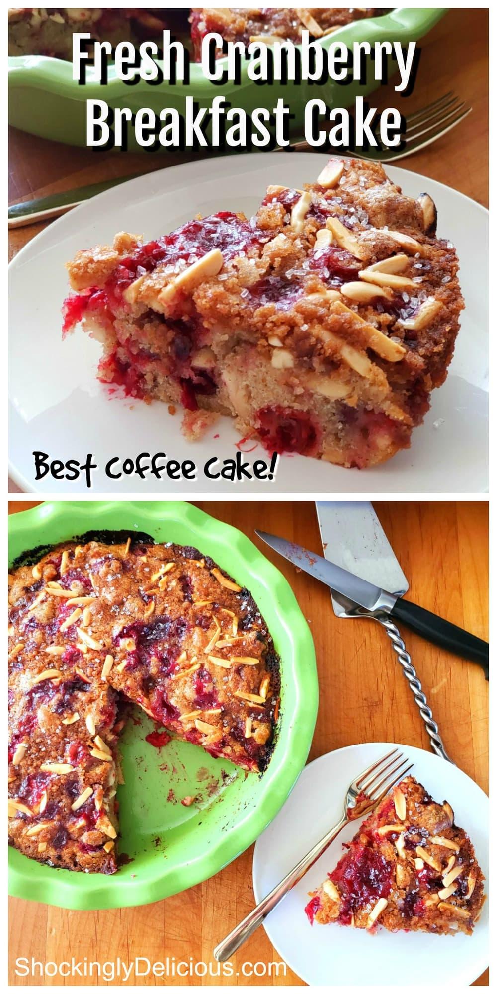 Fresh Cranberry Breakfast Cake recipe on ShockinglyDelicious.com